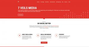 7veils media social media marketing